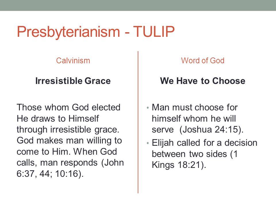 Presbyterianism - TULIP