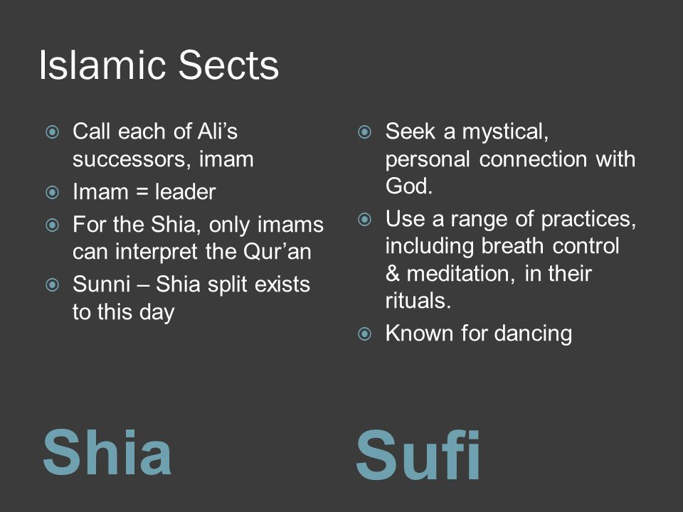 Sufi Shia Islamic Sects Call each of Ali's successors, imam