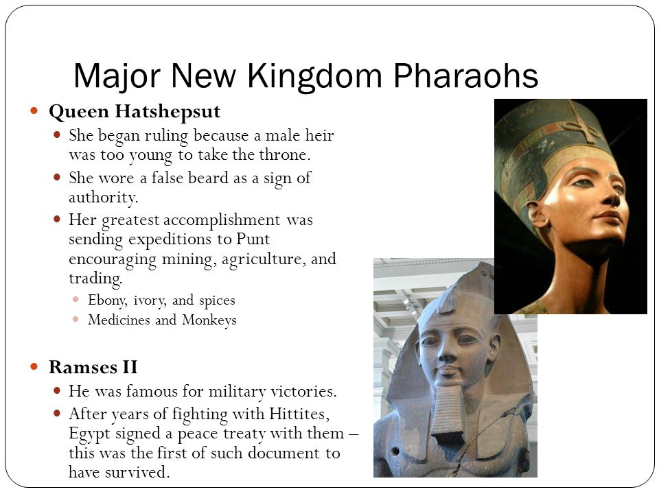 role and contribution of new kingdom pharaohs Pharaohs of ancient egypt introduction and challenges faced by pharaohs in the new kingdom the students will then take on the role of their assigned.