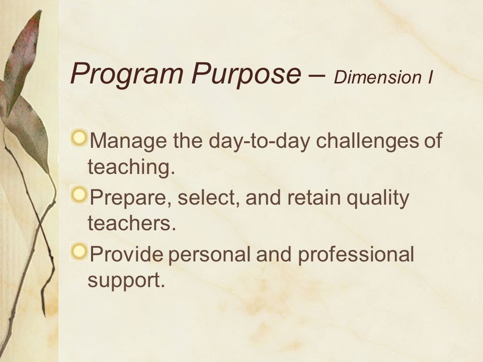 Program Purpose – Dimension I
