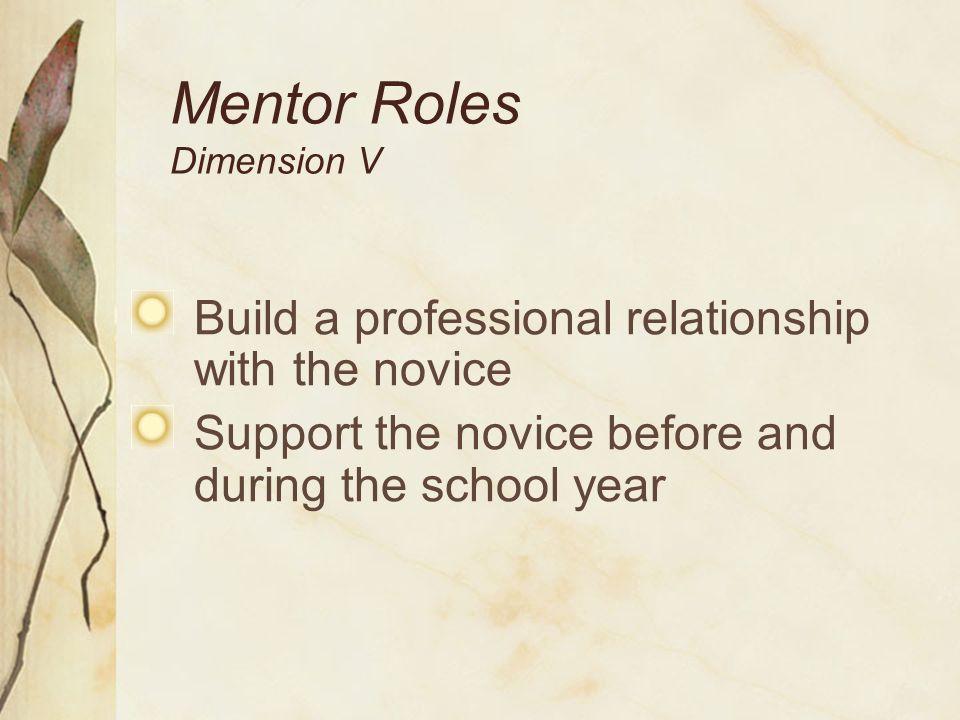 Mentor Roles Dimension V