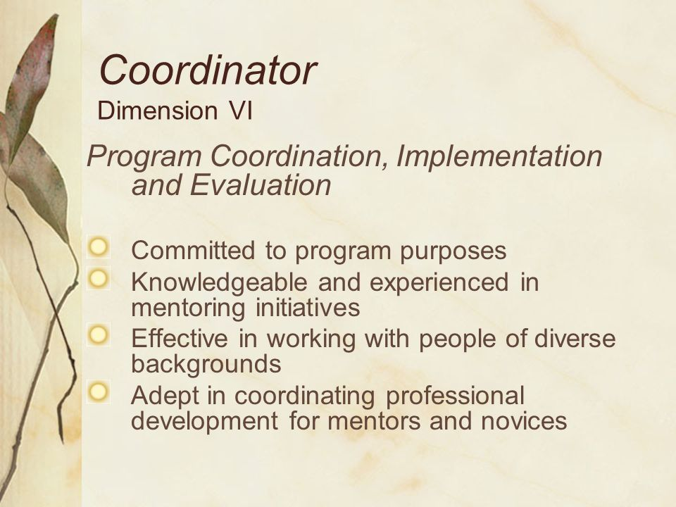 Coordinator Dimension VI