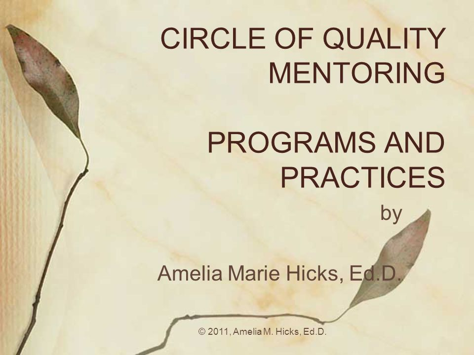 CIRCLE OF QUALITY MENTORING PROGRAMS AND PRACTICES