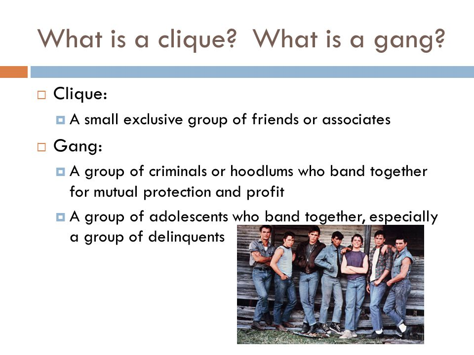 What is a clique What is a gang