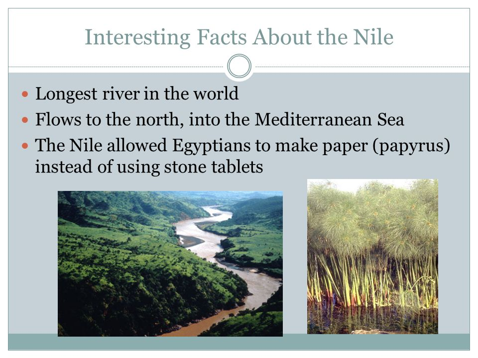Interesting Facts About the Nile