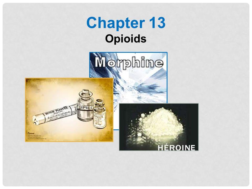 Chapter 13 Opioids