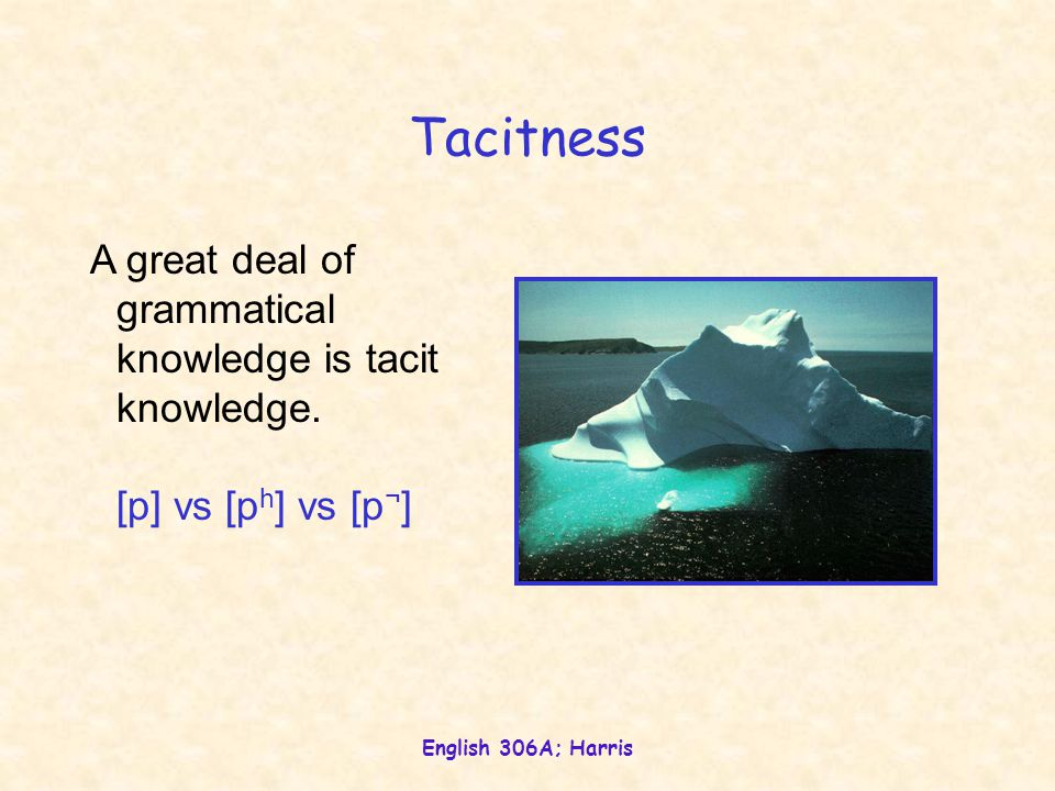 Tacitness A great deal of grammatical knowledge is tacit knowledge.