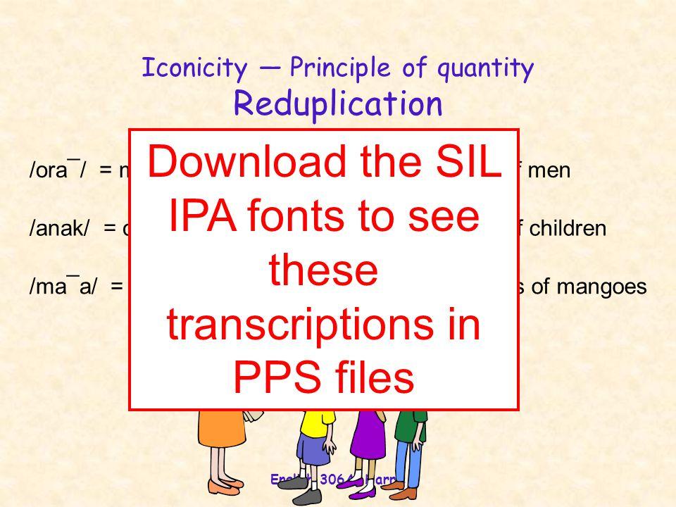 Iconicity — Principle of quantity Reduplication