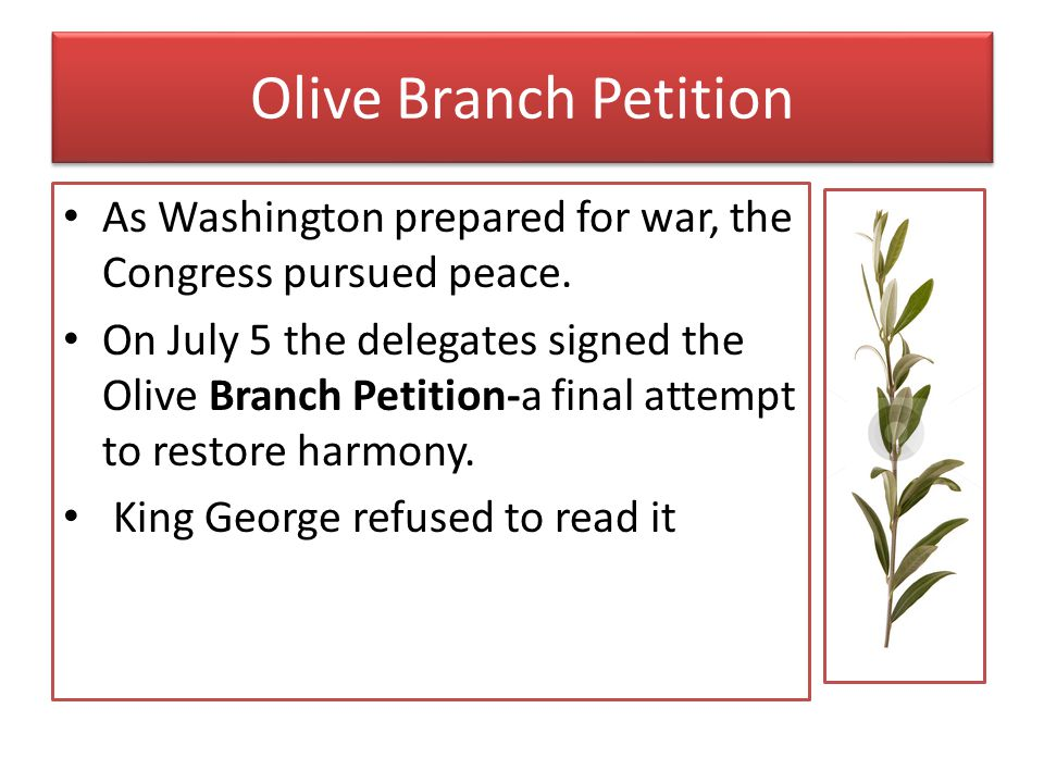 Olive Branch Petition As Washington prepared for war, the Congress pursued peace.
