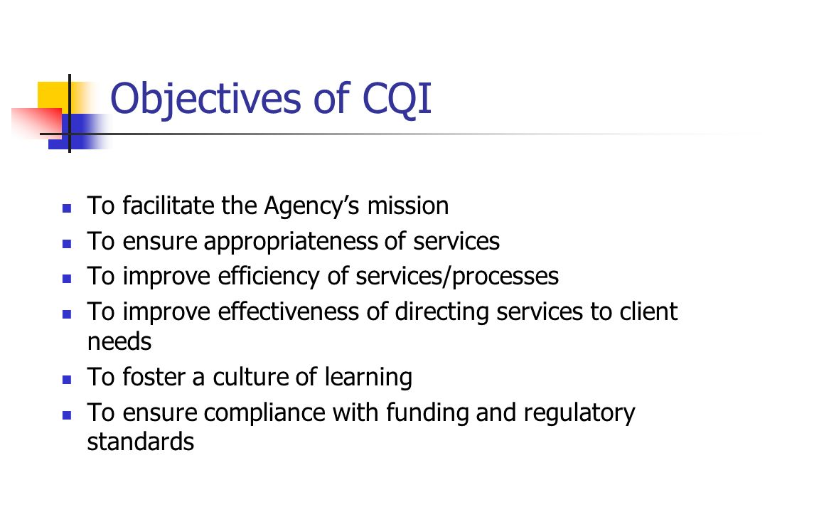 Objectives of CQI To facilitate the Agency's mission