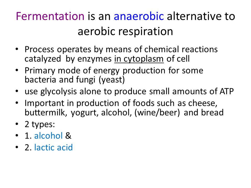 Fermentation is an anaerobic alternative to aerobic respiration
