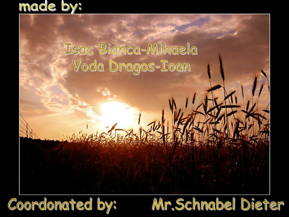 Coordonated by: Mr.Schnabel Dieter