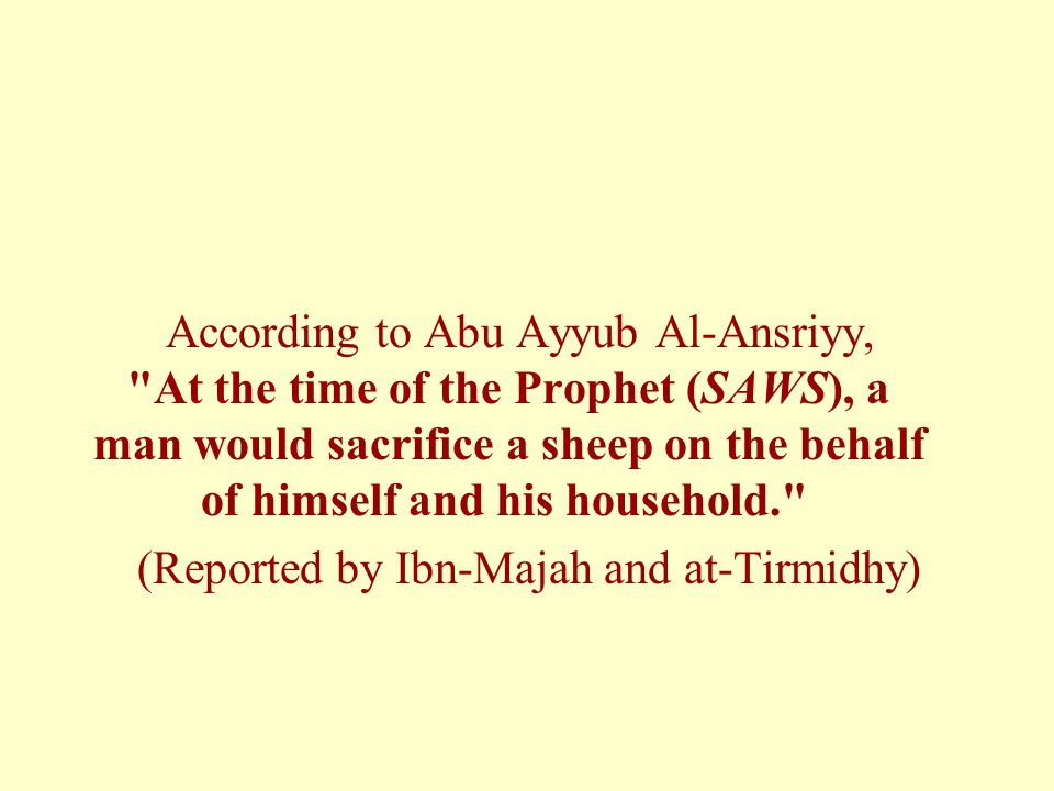 (Reported by Ibn-Majah and at-Tirmidhy)