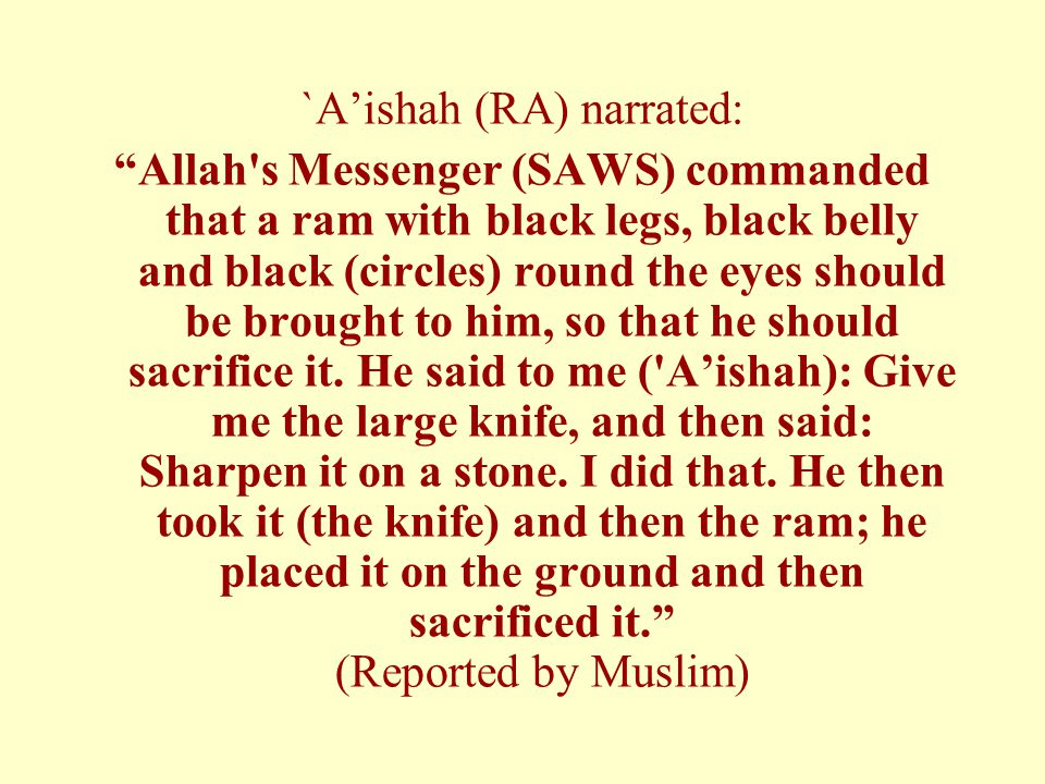 `A'ishah (RA) narrated: