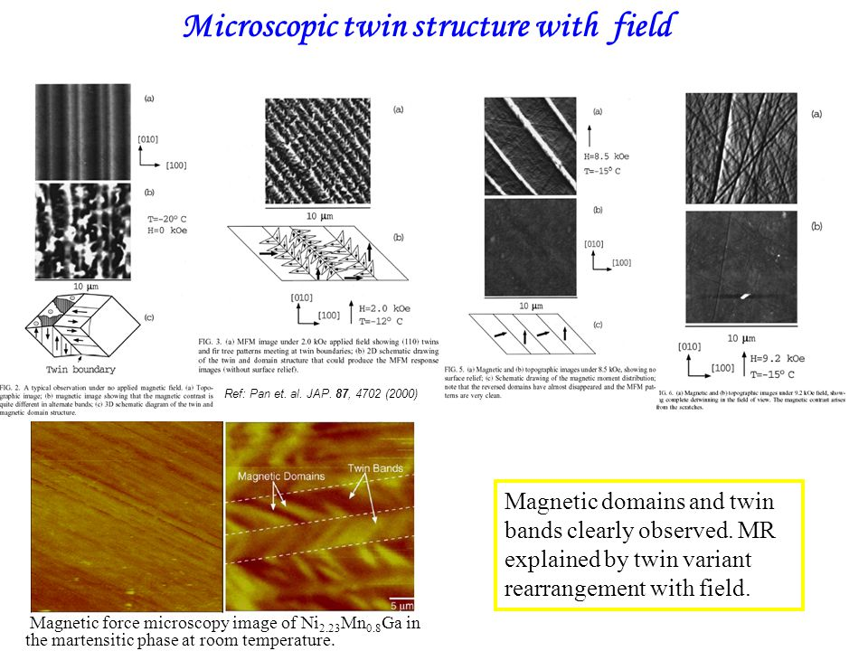 Microscopic twin structure with field