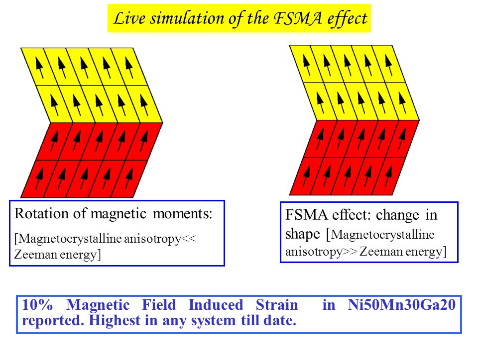 Live simulation of the FSMA effect