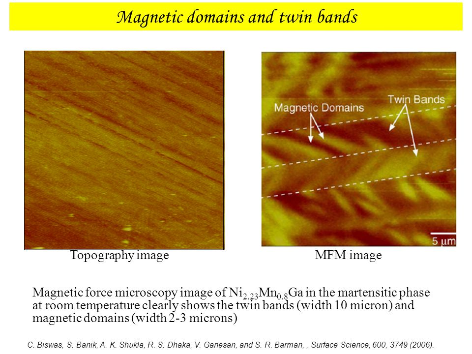 Magnetic domains and twin bands