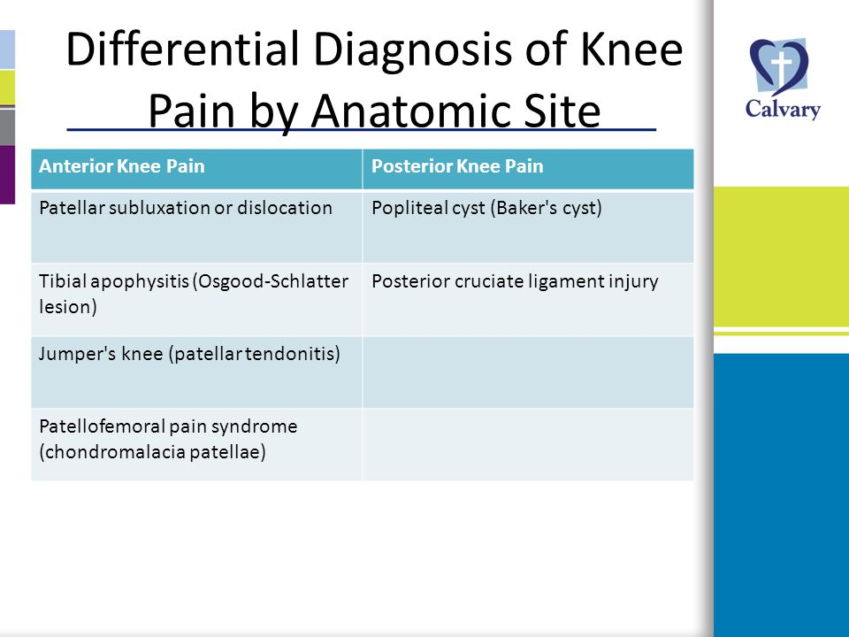 Differential Diagnosis of Knee Pain by Anatomic Site