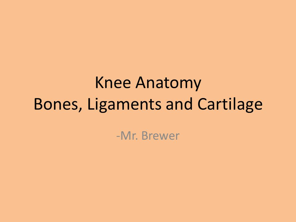 Knee Anatomy Bones, Ligaments and Cartilage - ppt video online download