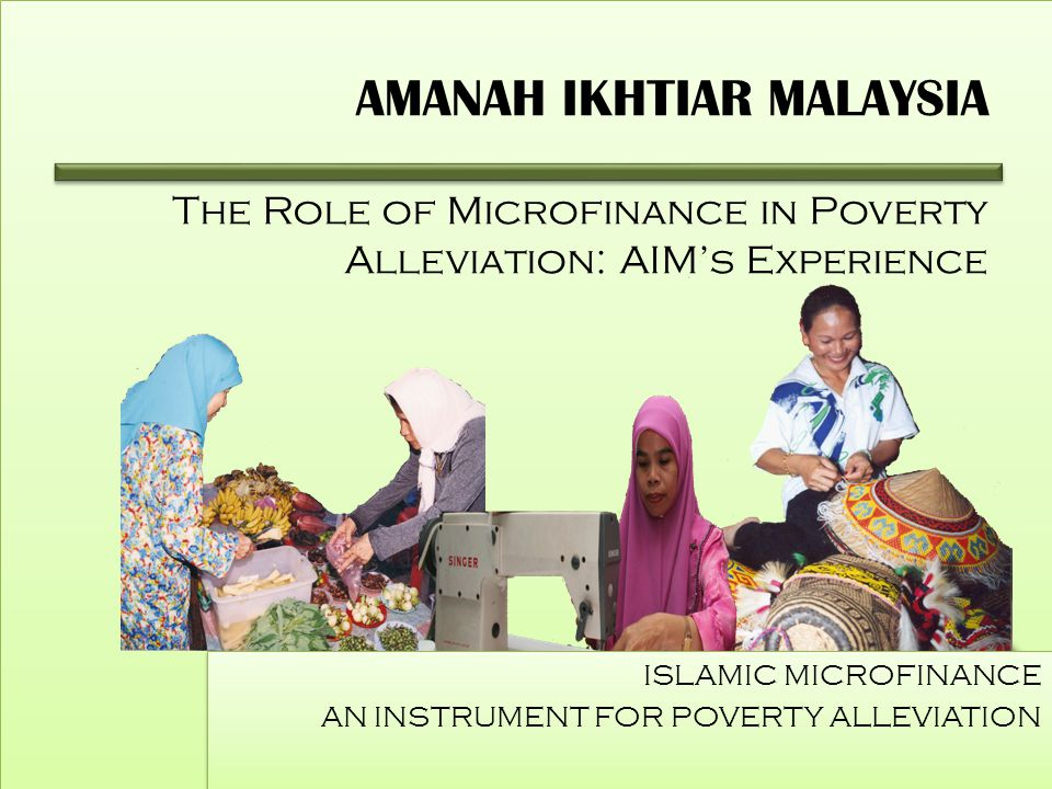 role of micro finance