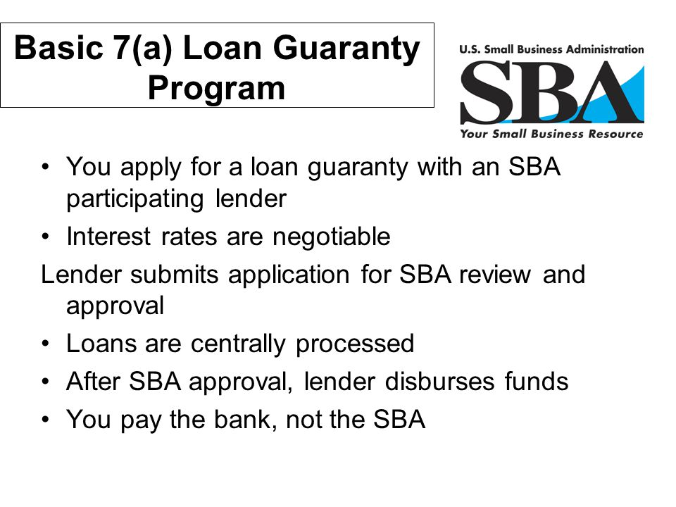 Basic 7(a) Loan Guaranty Program