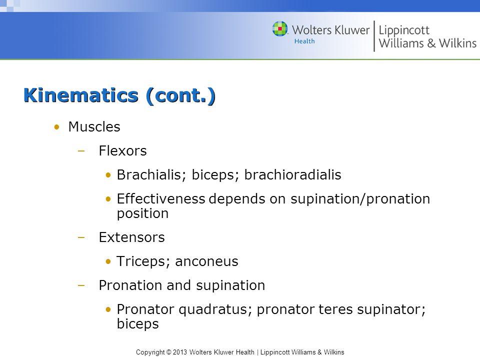 Kinematics (cont.) Muscles Flexors Brachialis; biceps; brachioradialis