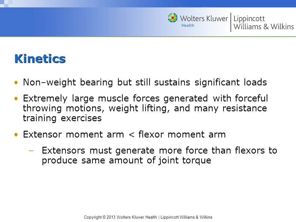 Kinetics Non–weight bearing but still sustains significant loads