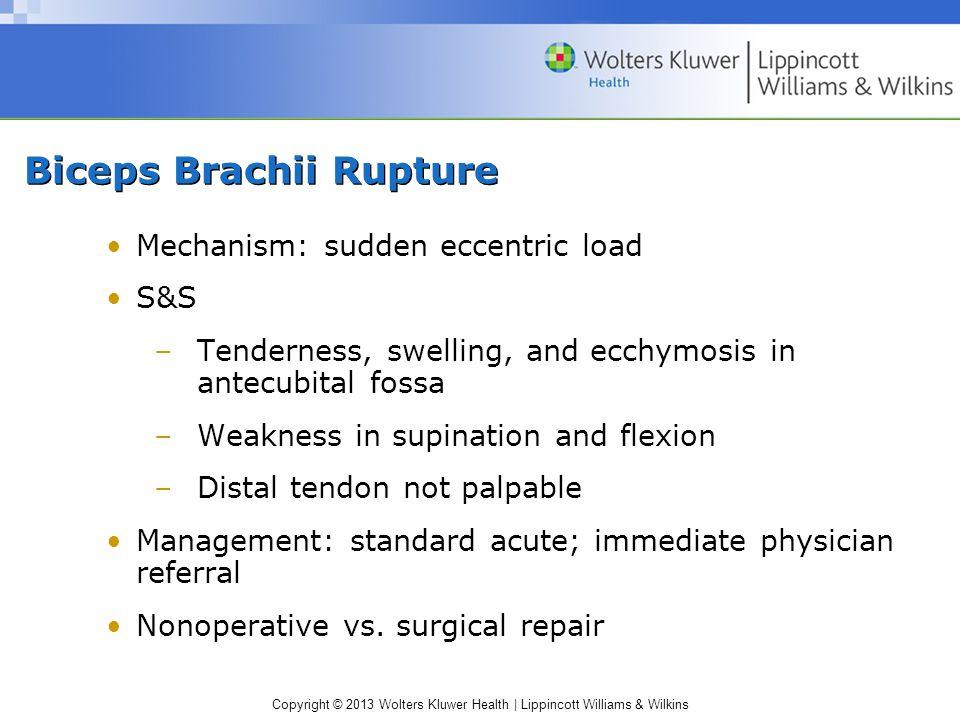 Biceps Brachii Rupture