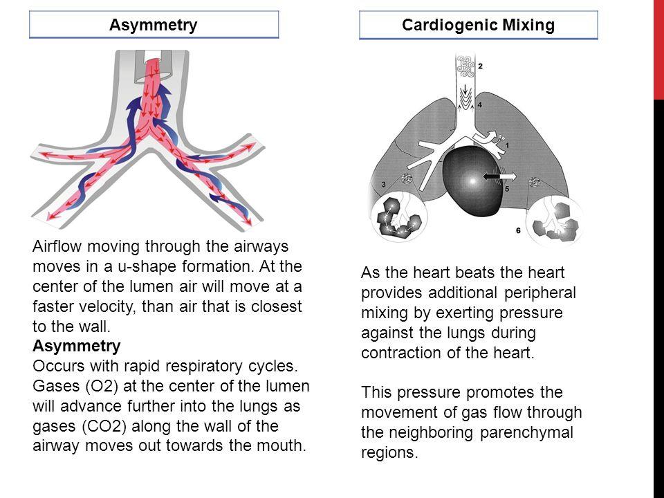 Asymmetry Cardiogenic Mixing.