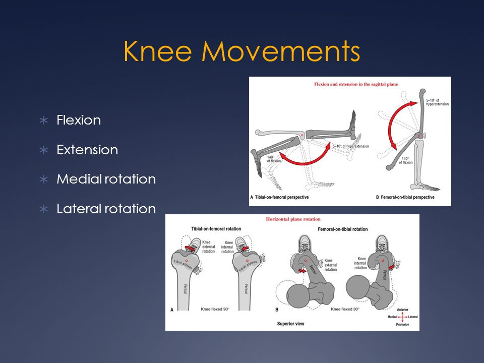 Knee Movements Flexion Extension Medial rotation Lateral rotation