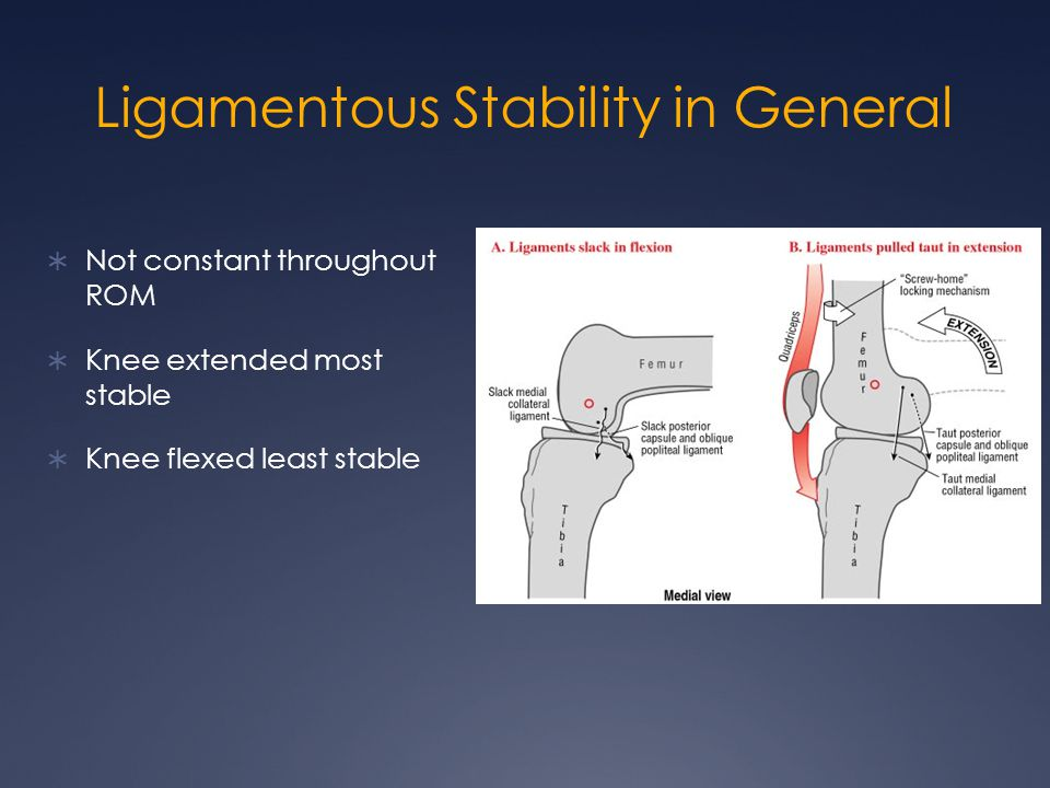 Ligamentous Stability in General