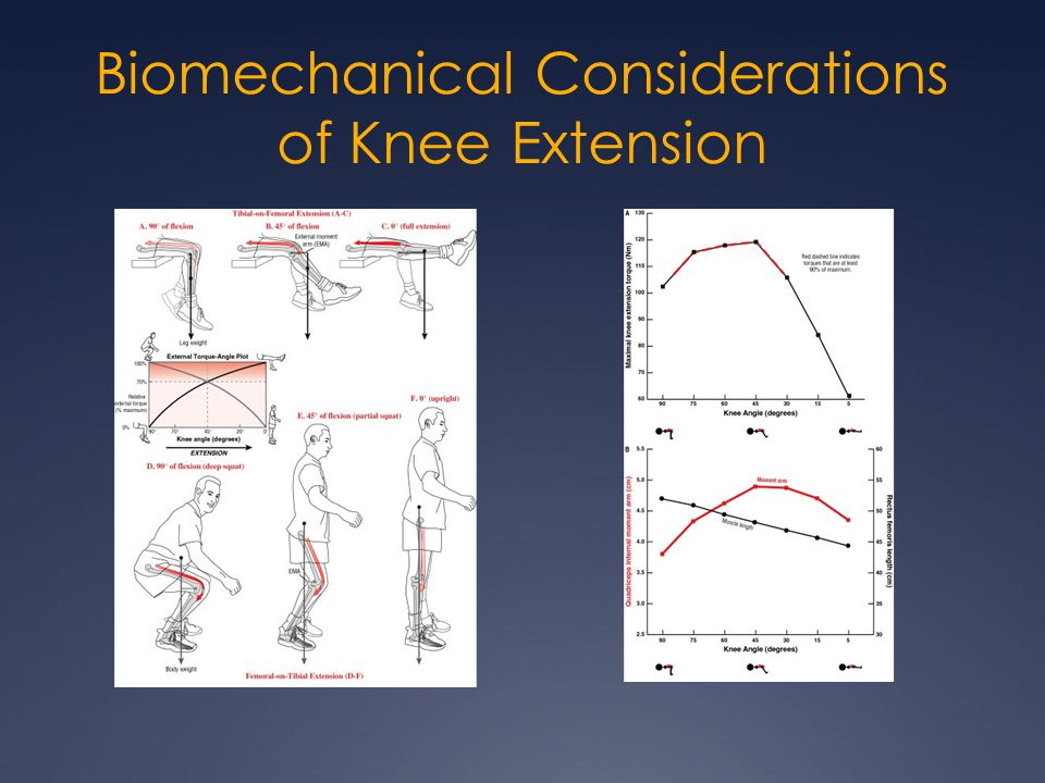 Biomechanical Considerations of Knee Extension