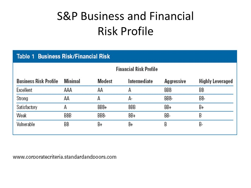 S&P Business and Financial Risk Profile
