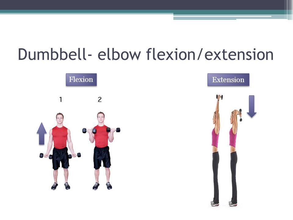 Dumbbell- elbow flexion/extension