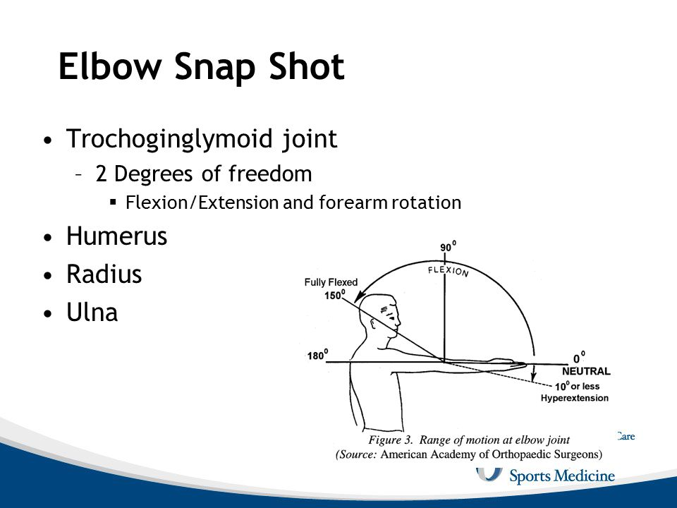 Elbow Snap Shot Trochoginglymoid joint Humerus Radius Ulna