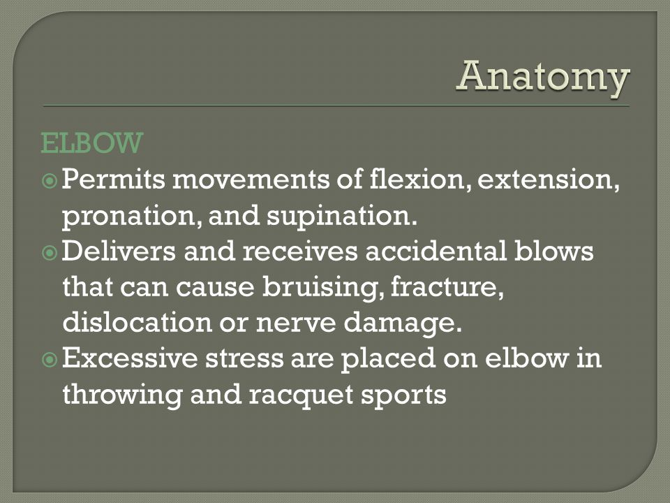 Anatomy ELBOW. Permits movements of flexion, extension, pronation, and supination.
