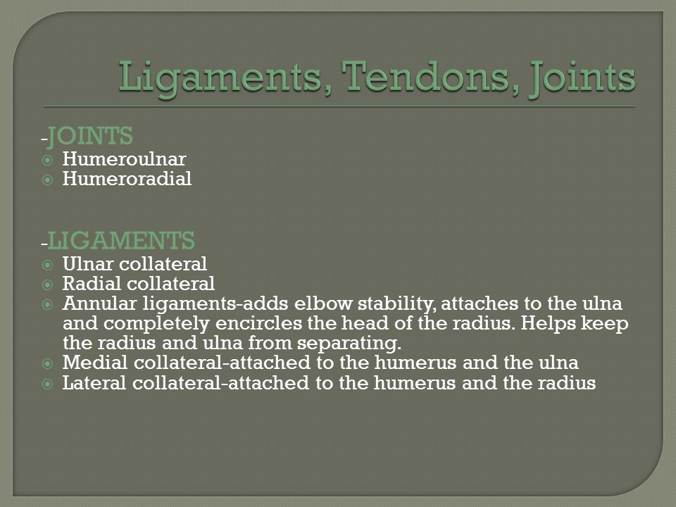 Ligaments, Tendons, Joints