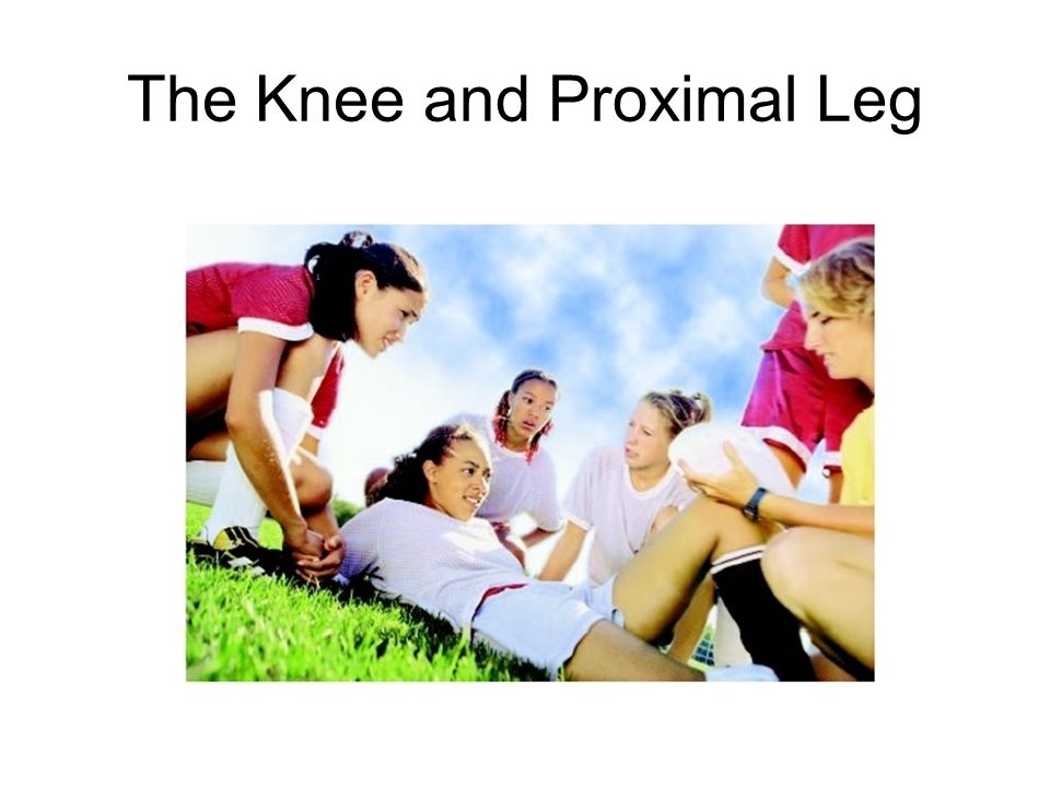 The Knee and Proximal Leg