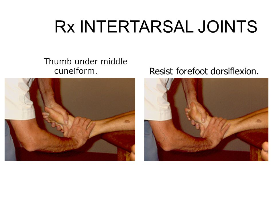 Rx INTERTARSAL JOINTS Resist forefoot dorsiflexion.