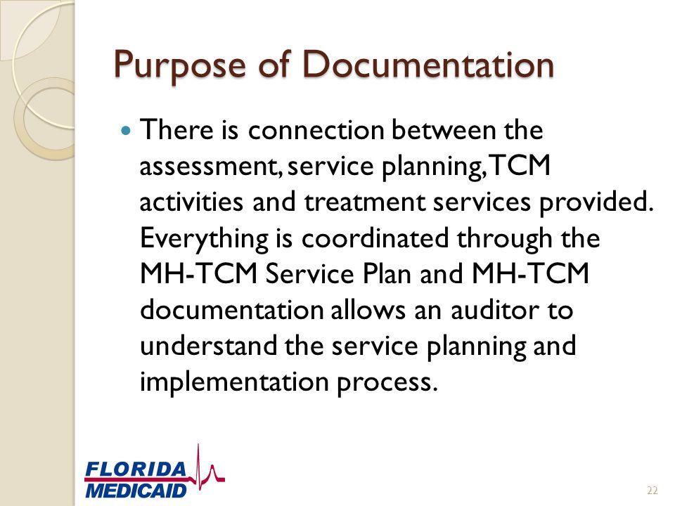 Purpose of Documentation