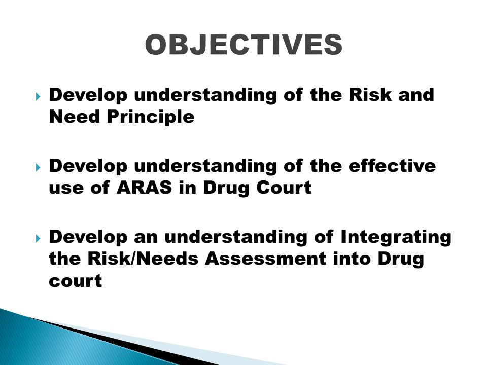 OBJECTIVES Develop understanding of the Risk and Need Principle
