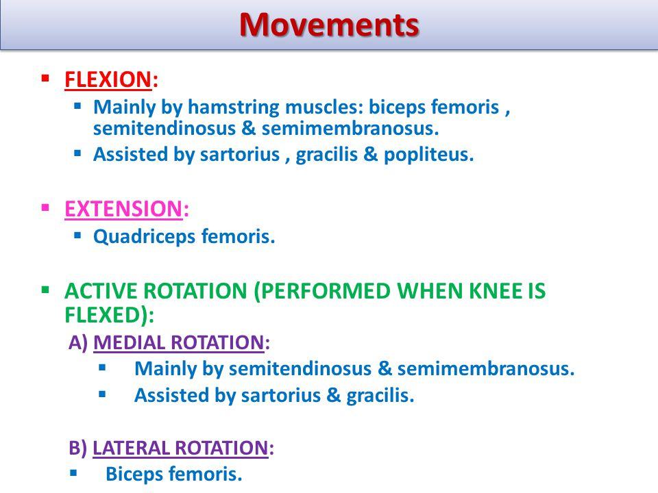Movements FLEXION: EXTENSION: