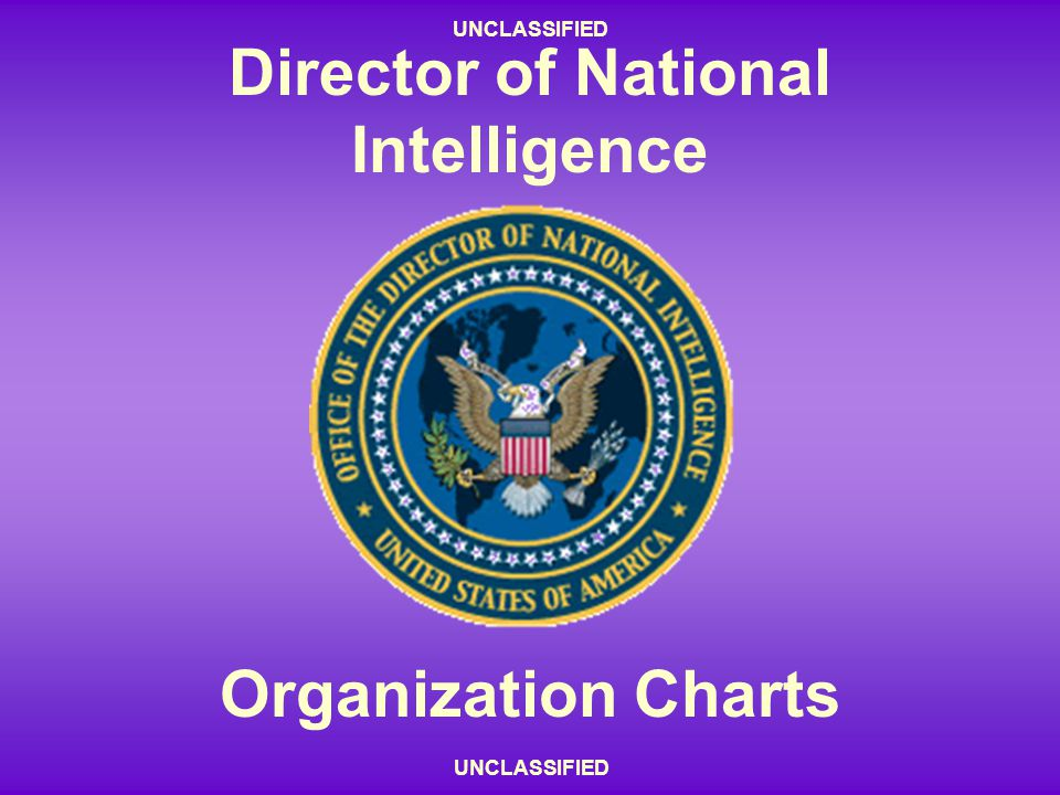 Director of National Intelligence Organization Charts