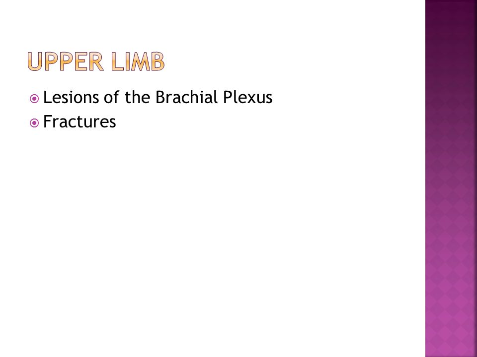 Upper limb Lesions of the Brachial Plexus Fractures