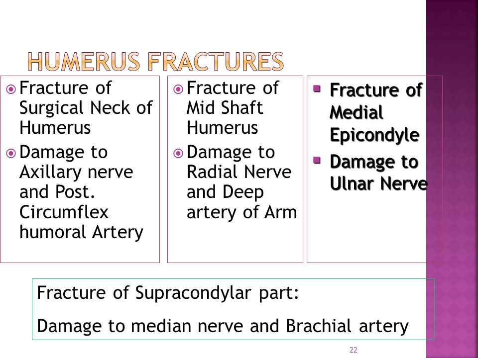 Humerus Fractures Fracture of Surgical Neck of Humerus