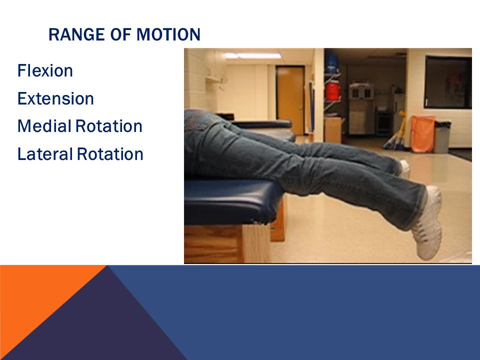 Flexion Extension Medial Rotation Lateral Rotation