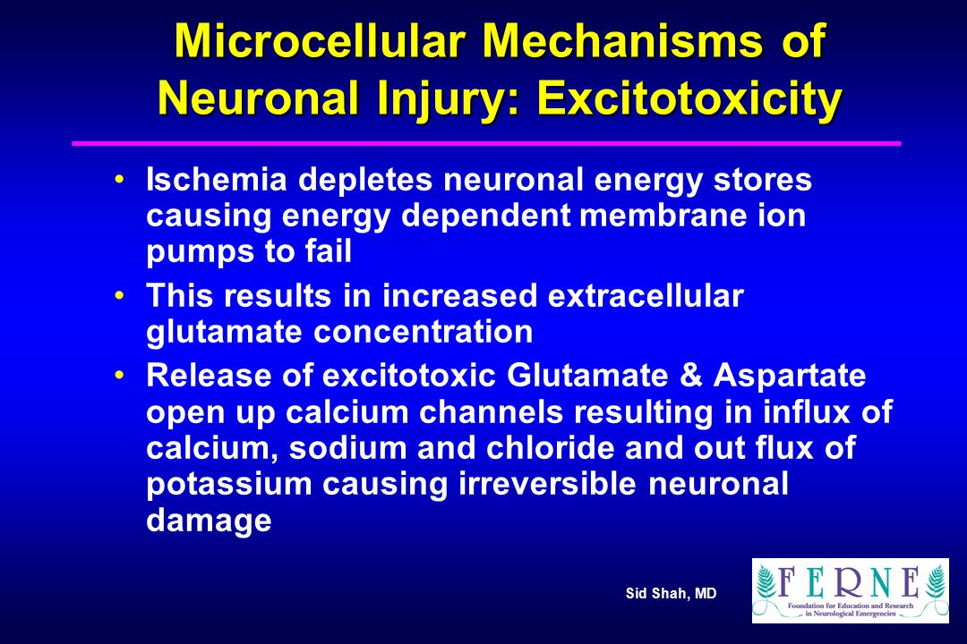 Microcellular Mechanisms of Neuronal Injury: Excitotoxicity