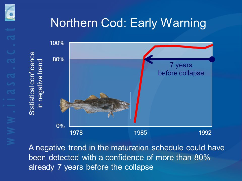 Northern Cod: Early Warning