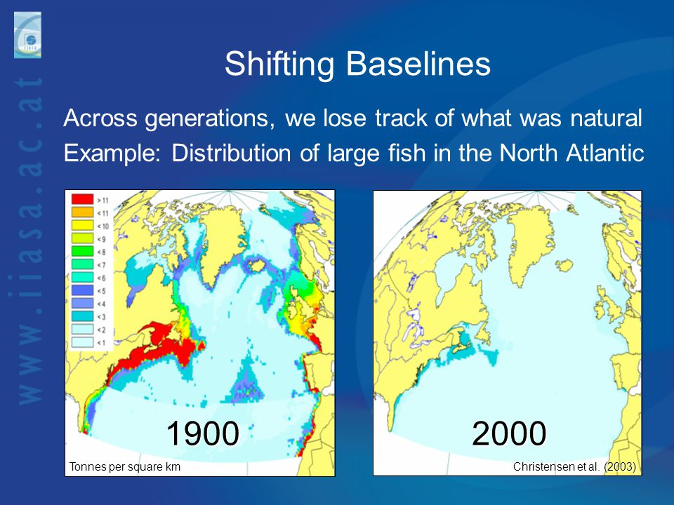 Shifting Baselines Across generations, we lose track of what was natural. Example: Distribution of large fish in the North Atlantic.