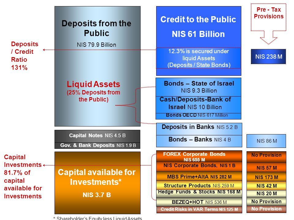 Deposits from the Public (25% Deposits from the Public)